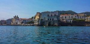 Vista Taxi boat Ischia. Quelliconlavaligia